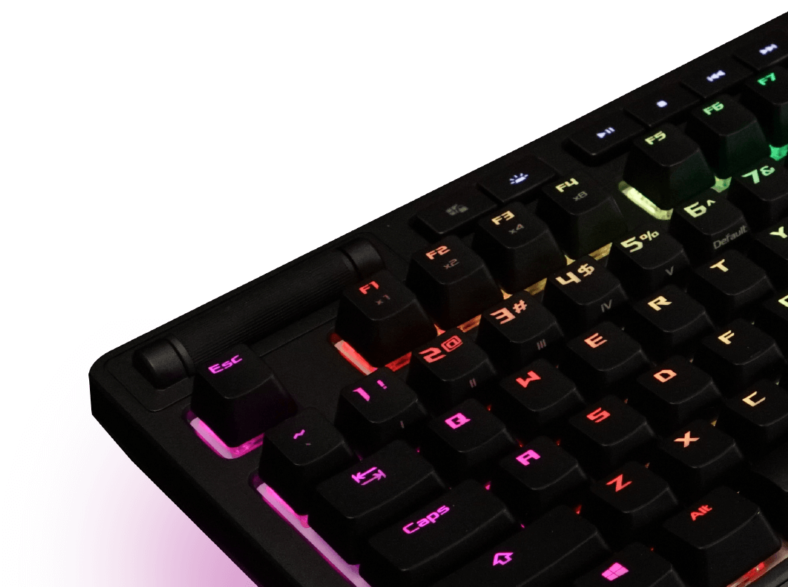 ASUS ROG Strix Flare RGB Mechanical Gaming Keyboard with Cherry MX Silent  Red Switches, Aura Sync RGB Lighting, Customizable Badge, USB Pass-Through